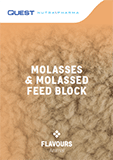 Flavours Molasses & Molassed Feed Blocks Brochure Download